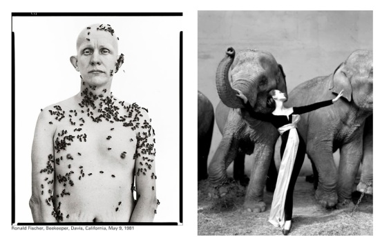 Photos by Richard Avedon