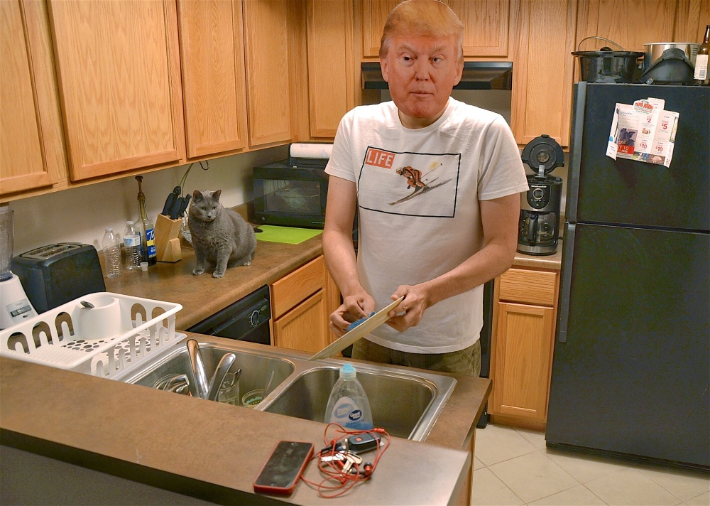 Trump Dish Washing 060